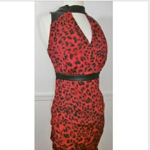 73634f9103a Thalia Sodi Red Animal Print Dress Retail  89